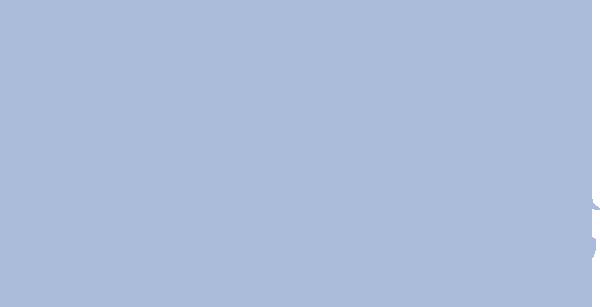 wereldkaart finis