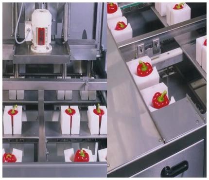Finis Pepper machine
